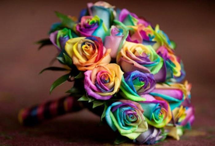 Радужные розы- креативный и необычный подарок