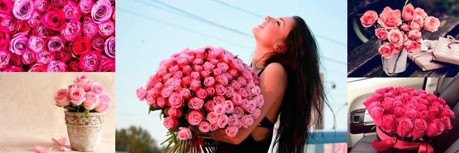 Значение розовых цветов